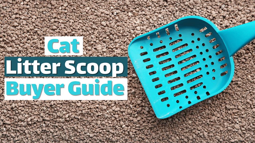 Cat Litter Scoop Buyer Guide