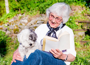 Dog Breeds That Seniors Love