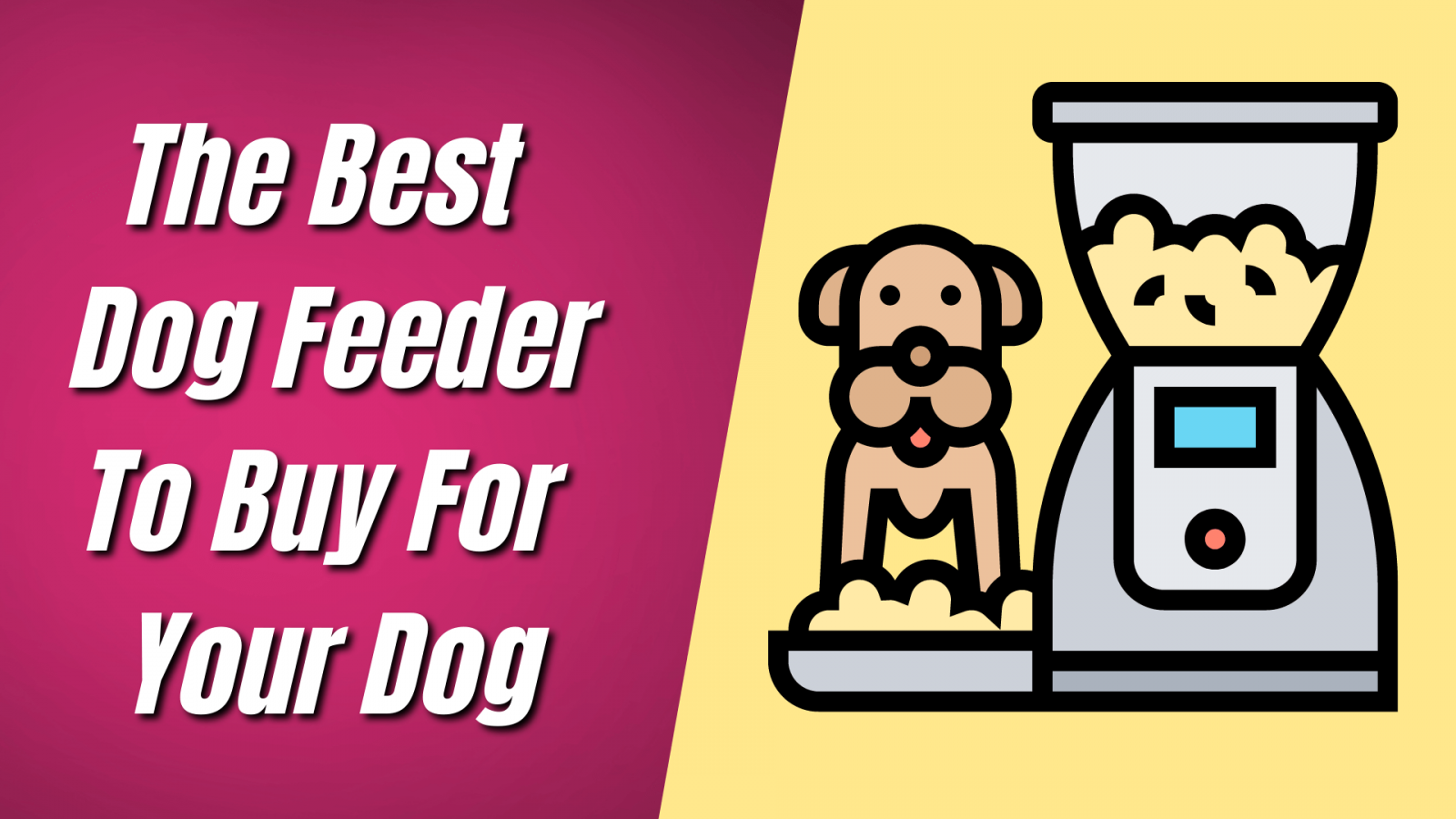 The-Best-Dog Feeder-To-Buy-For Your-Dog